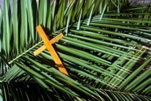 Holy Week: Now It Begins, Now It All Begins